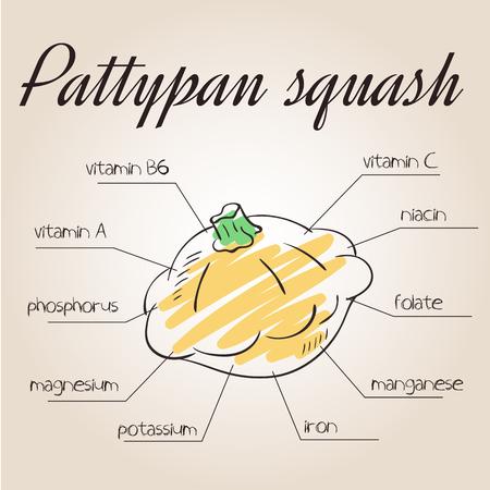 nutrientes: ilustraci�n vectorial de la lista de nutrientes de calabaza pattypan.