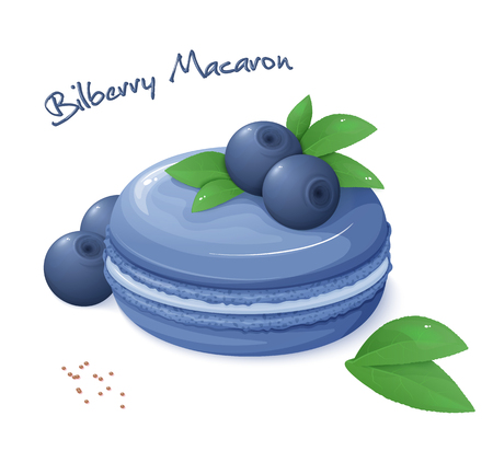 macaron: vector illustration of realistic isolated bilberry macaron with fresh ripe bilberry berries and leaves.