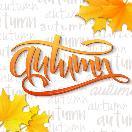 vector illustration of hand lettering word - autumn - with realistic yellow autumn leaves on typography backdrop, filled with word autumn.