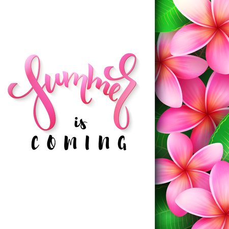 vector illustration of hand lettering poster - summer is coming with paper sheet on a background of blooming rose plumeria