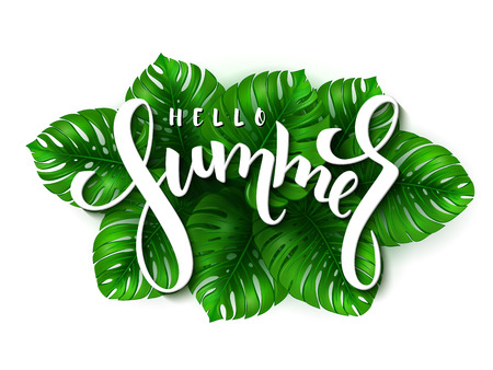vector illustration of hand lettering - hello summer on a background of monstera leaves Illustration