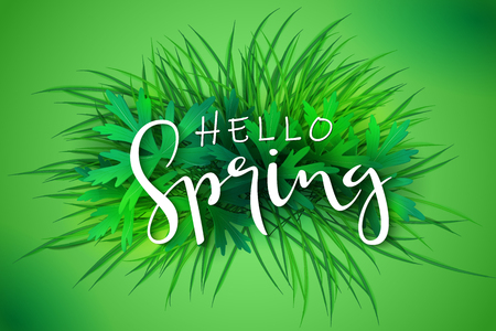 vector illustration of spring banner template with hand lettering phrase - hello spring - on a background of grass and leaves. Illustration