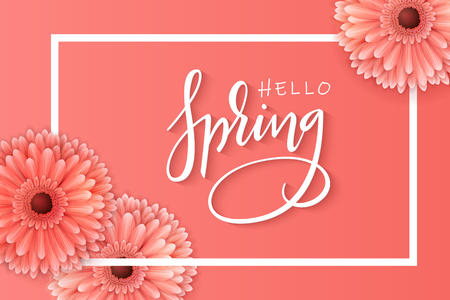 vector illustration of spring banner template with hand lettering phrase - hello spring - with realictic gerbera flowers.