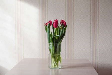 Lilac tulips on a table in a glass vase on a sunny day, a gift from a loved one