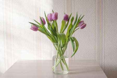 Red and purple tulips on a table in a crafting vase with a ribbon on a sunny day close up, a gift from a loved one