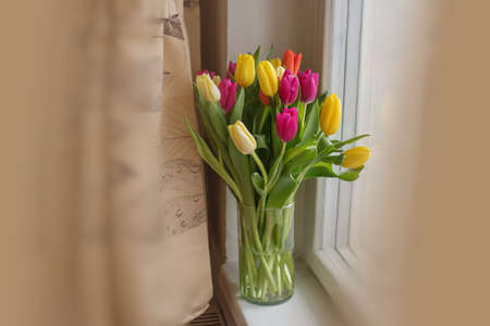 Beautiful large multi-colored tulips yellow orange and red in a glass vase on the windowsill gift favorite