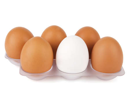 standing out from the crowd: White egg among brown ones  Standing out from crowd concept