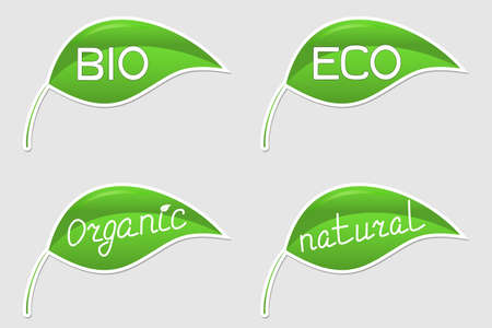 Green eco-friendly stickers in form of leaves Vector