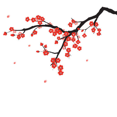 cherry blossom tree: Plum blossom in Chinese painting style Illustration