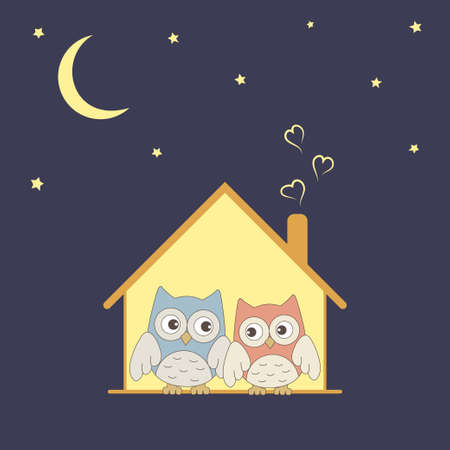Cute owls couple in their cosy nest under stars Vector