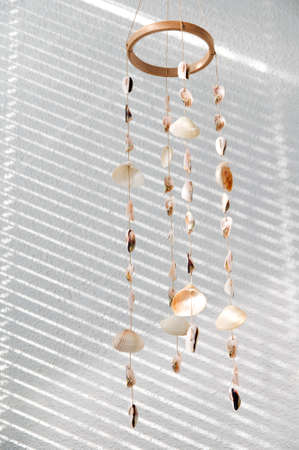 Handmade wind chimes  mobile  of seashells in sunlight photo
