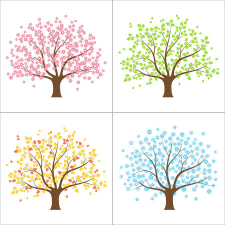 four texture: Tree in spring, summer, autumn and winter  Four seasons concept Illustration