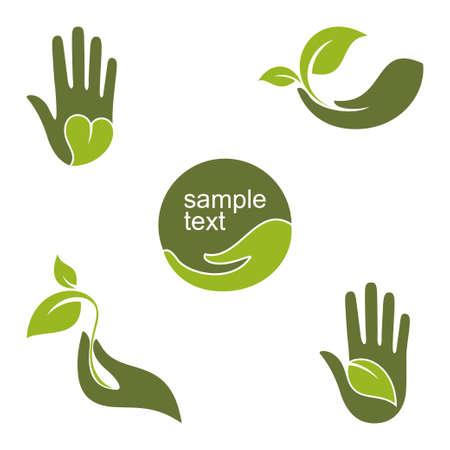 caja fuerte: Conjunto de emblemas y etiquetas con las manos humanas y las hojas verdes de la ecología jardinería belleza natural y el diseño de la salud