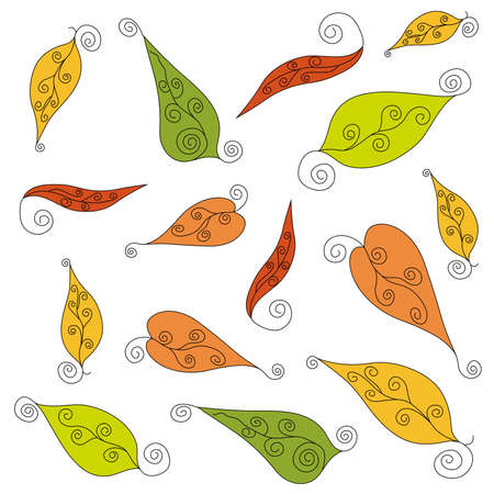 Multicolored swirling spiral leaves of different shapes on a white background