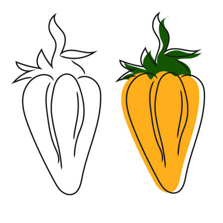 Hand drawn doodle of orange pepper. Isolated vector vegetable for food market, organic produce farm or harvest festival