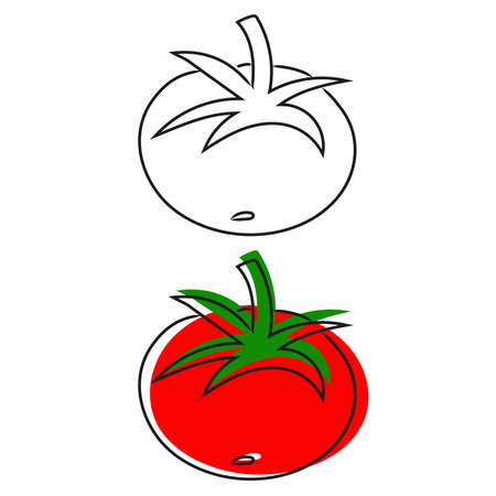 Vegetable tomato in doodle style isolated on white background. Hand drawn illustration
