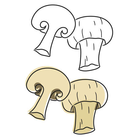 Champignon mushrooms doodle isolated on white background. Hand drawn style.