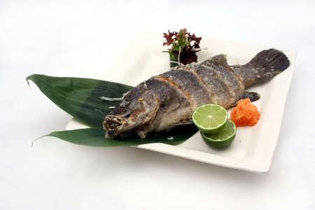 barramundi: fish: barramundi