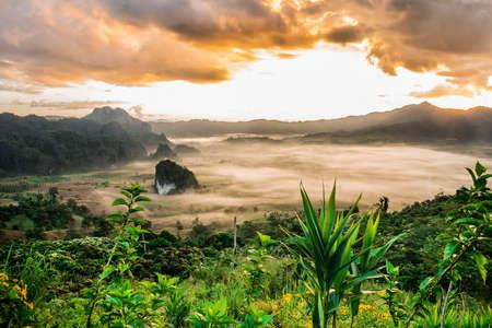scenary: Scenary fog and cloud at Phulangka nan north of Thailland