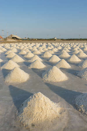 hot climate: Pile of salt under hot climate on field