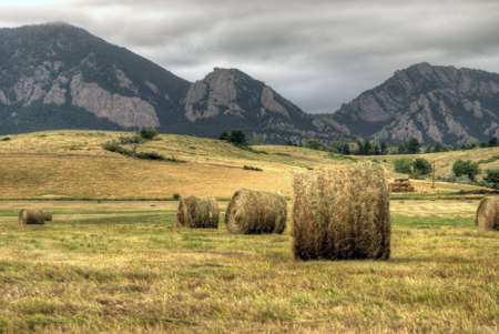 Bales of Hay in field with Colorado Rocky Mountains in the background Stock Photo