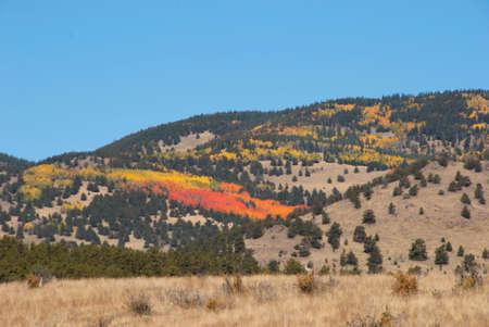 colorado rockies: Fall Foliage Colors in the Colorado Rockies