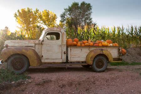 calabaza: Vintage Granja camión lleno de calabazas fuera en el campo de maíz en una mañana de principios de otoño