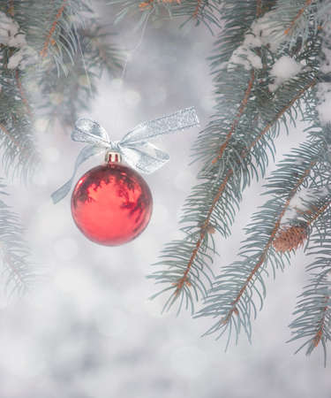 Red Ornament with Silver Bow Hanging from A Snow-Covered Pine Tree Outdoors