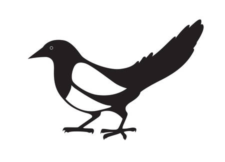 Elster. Schwarz-Weiß-Bild auf weißem Hintergrund. Vector isoliert.