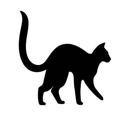 arching: Cat arching its back. Black silhouette on white background. Vector isolated for logo or mascot. Illustration