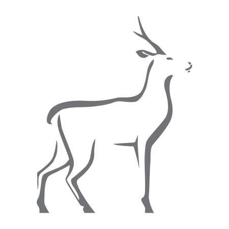 Roe deer image illustration. Illustration