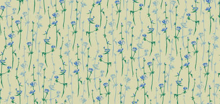 Chicory set. Vector flower seamless pattern. Hand drawn succory herb. Blue and green inflorescence. Illustration