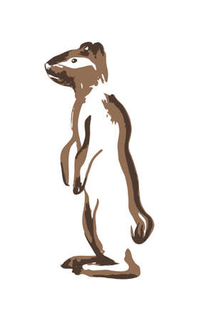 Hand drawn meerkat or ground squirrel. Vector illustration painted by ink. Silhouettee of animal on white background.