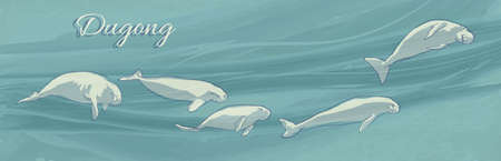 Dugongs underwater swimming. Vector illustration of sea cows on ocean current background. Hand drawn marine mammal animals.