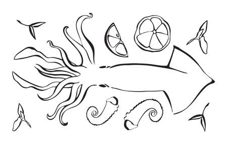 Hand drawn vector illustration of octopus as seafood. Poulpe with lemon and herbs. Black isolated on white background.