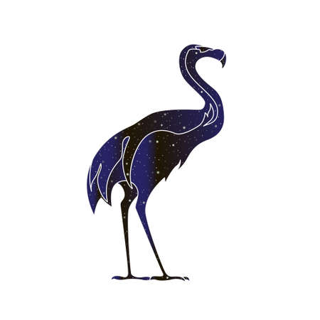 Flamingo bird silhouette. Vector line animal illustration, night sky color silhouette isolated on white background.