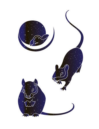 Set of cute mouses. Vector line rat animal illustration, night sky color silhouette isolated on white background. Illustration