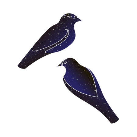 Two birds. Vector line animal illustration, night sky color silhouette isolated on white background.