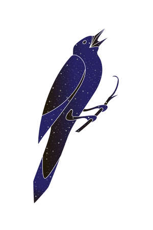 Starling bird sing. Vector outline illustration, night sky color silhouette isolated on white background.