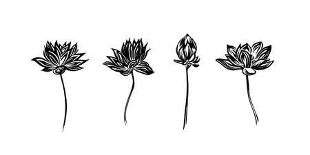 Croquis de contour de lotus dessiné à la main. Ensemble de fleurs de dessin vectoriel à l'encre noire. Illustration graphique, isolée sur fond blanc.
