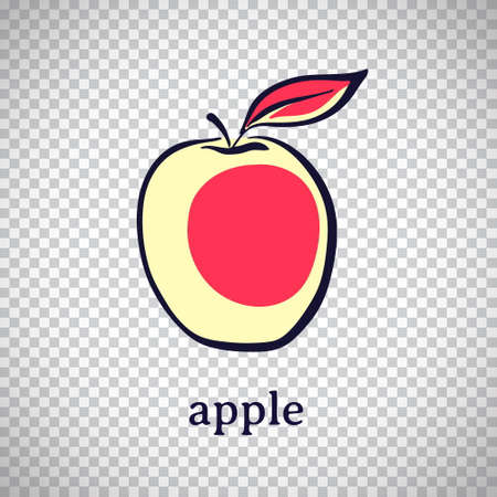 Hand drawn stylized apple. Vector fruit isolated on transparent background. Graphic illustration for logo or icon.