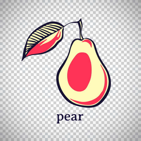 Hand drawn stylized pear. Vector fruit isolated on transparent background. Graphic illustration for logo or icon. 일러스트