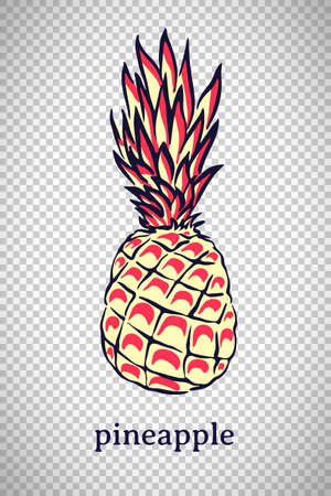 Hand drawn stylized pineapple. Vector ananas fruit isolated on transparent background. Graphic illustration for logo or icon.