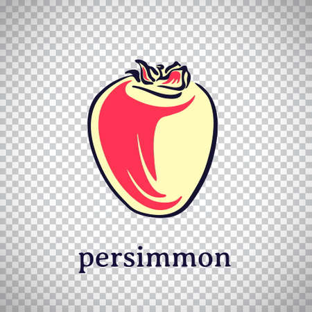 Hand drawn stylized persimmon. Vector fruit isolated on transparent background. Graphic illustration for logo or icon.