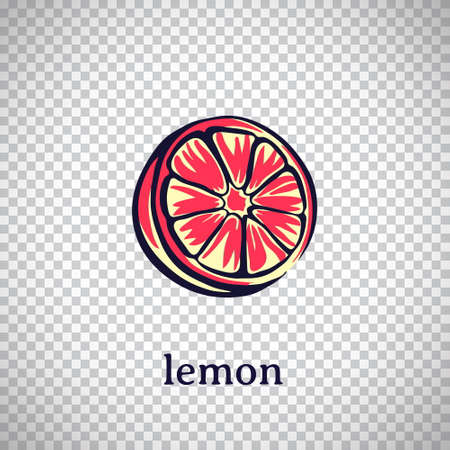 Hand drawn stylized lemon. Vector citrus fruit isolated on transparent background. Graphic illustration for logo or icon.