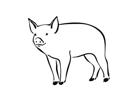 Hand drawn cute pig sketch illustration. Vector black ink drawing farm animal, outline silhouette isolated on white background.