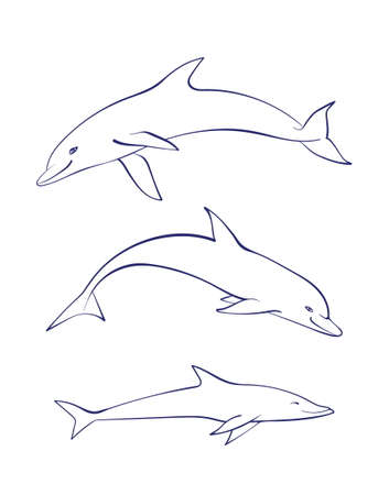Vector outline cartoon sea dolphin set. Graphic underwater animal illustration isolated on white background for coloring book.