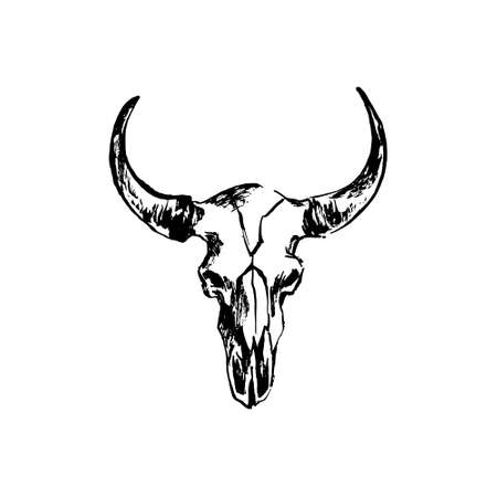 Hand drawn bison skull. Buffalo cranium vector illustration. Cow head bone black isolated on white background. Illustration
