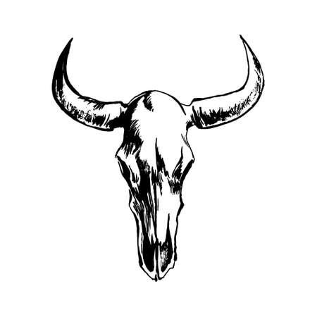 Hand drawn bison skull. Buffalo cranium sketch vector illustration. Cow head bone black isolated on white background.