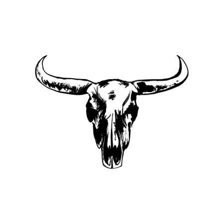 Hand drawn bison skull. Buffalo cranium vector grunge style illustration. Cow head bone black isolated on white background.